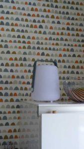 Détail du papier peint coloré de chez Scion